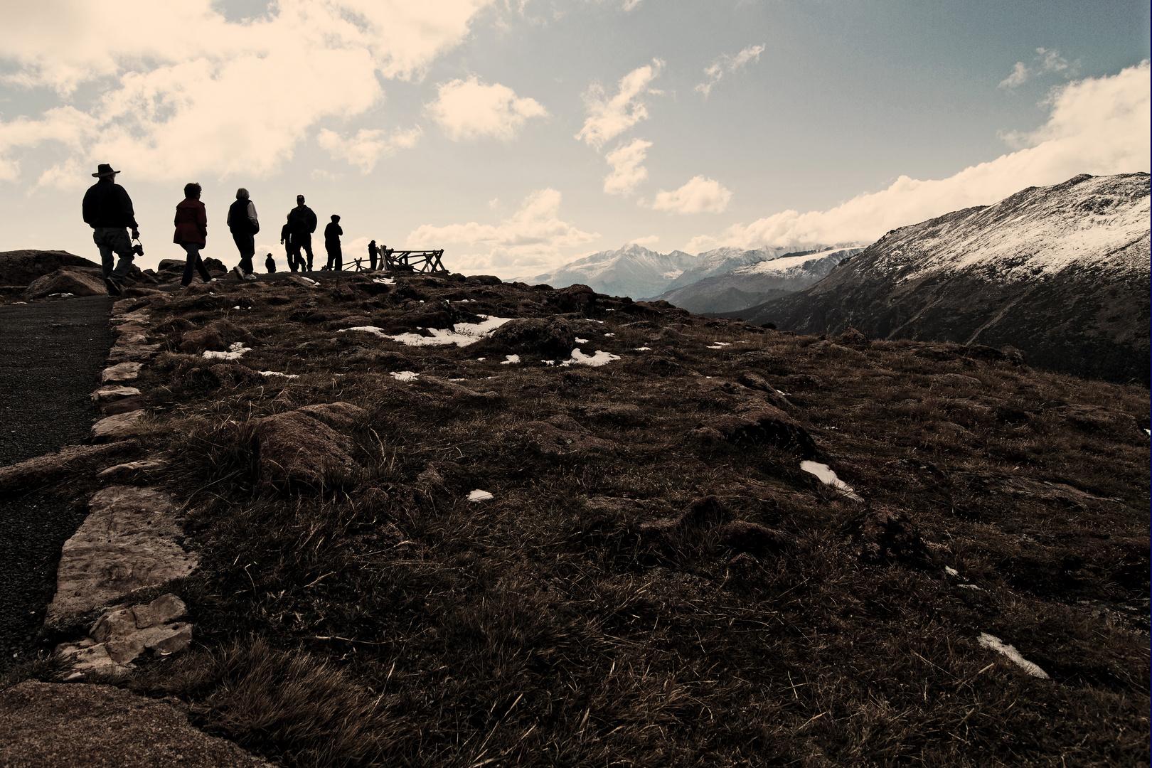 Tundra-Trubel