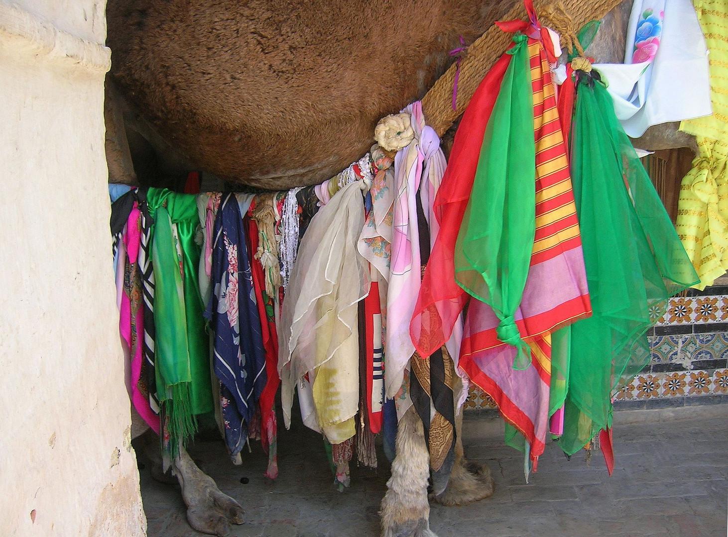 Tunesien - Kamel mit bunten Tüchern