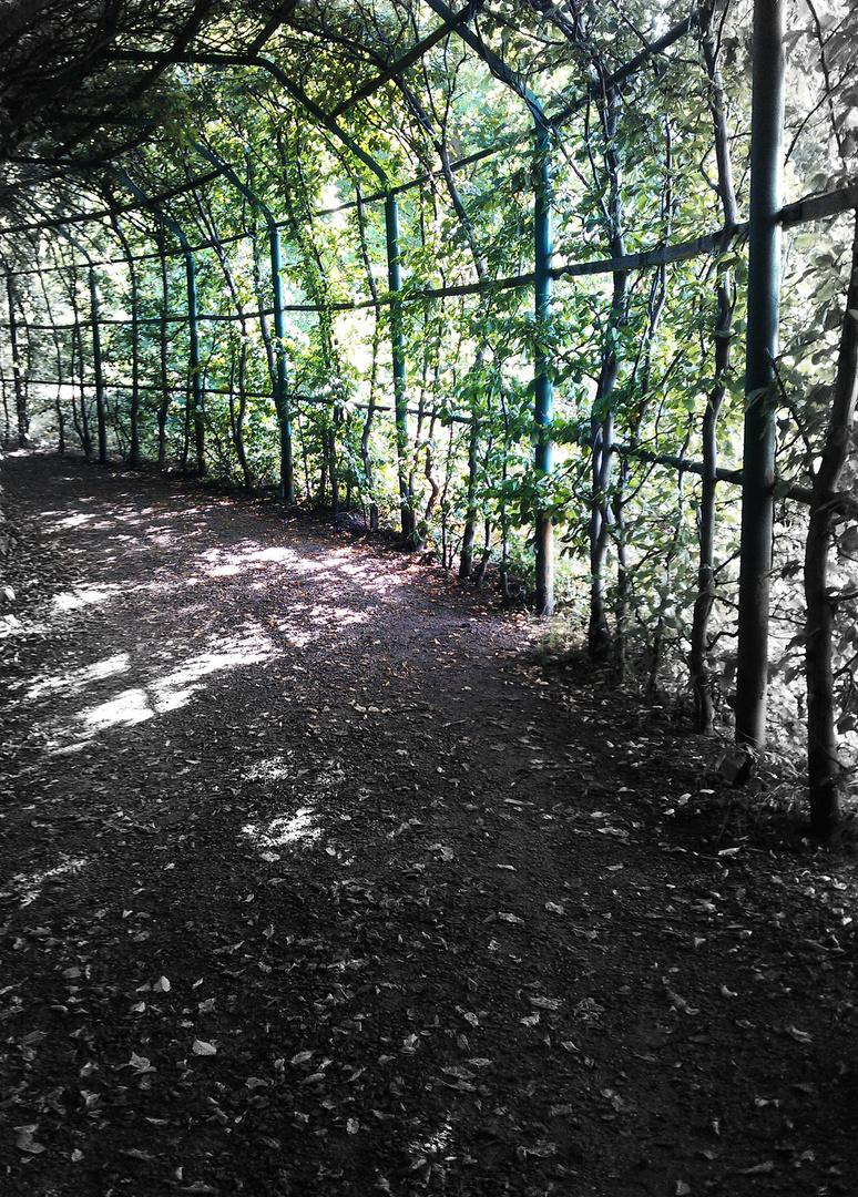 Tunnel der Pflanzen