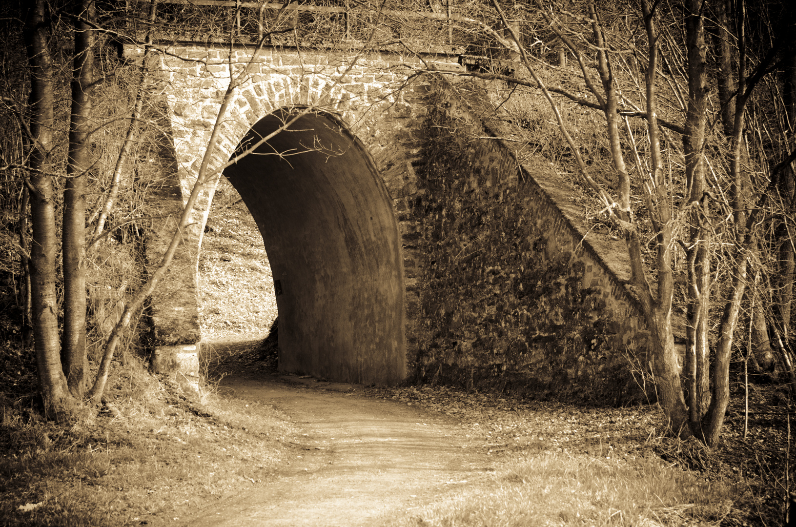 Tunnel s/w