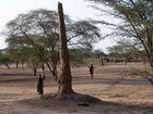 Turkana V