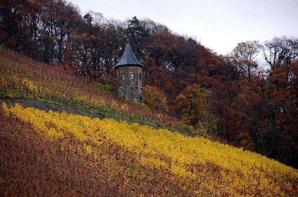 Turm im herbstlichen Weinberg