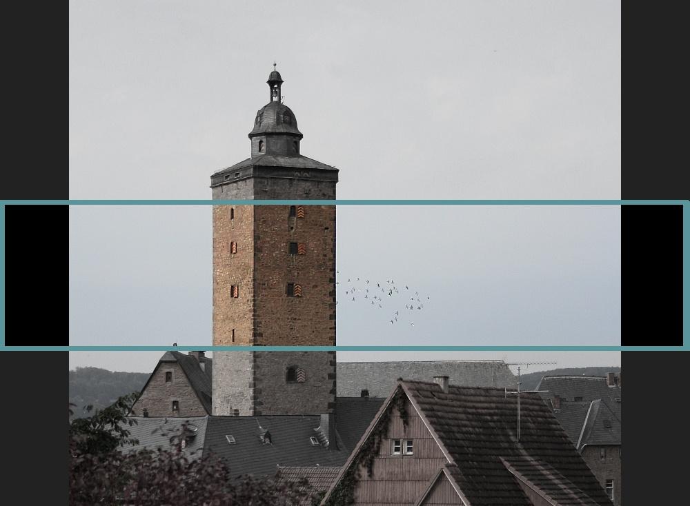 Turm und Tauben