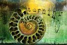 turn to the light von Janne Jahny