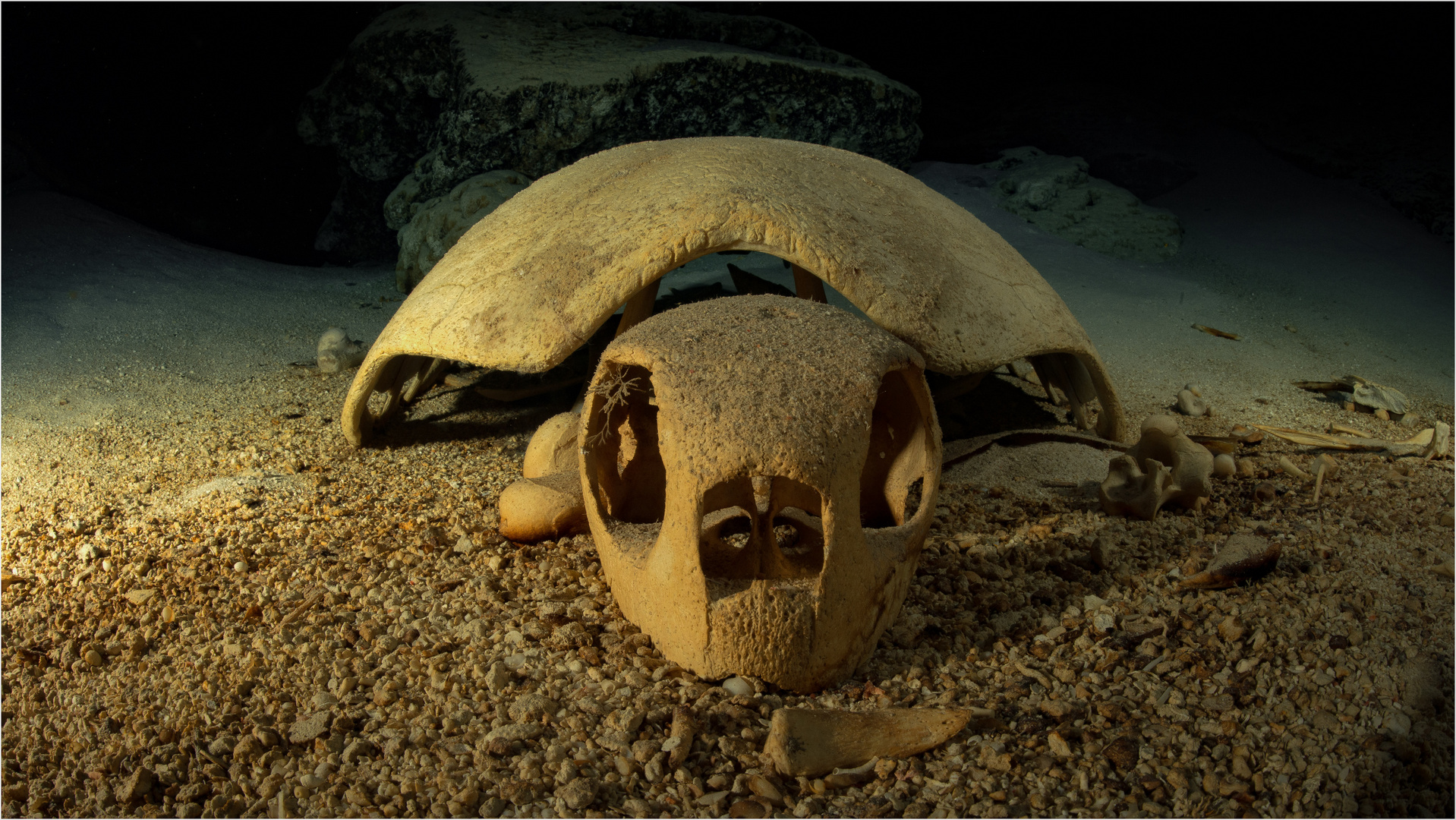 Turtle Tomb