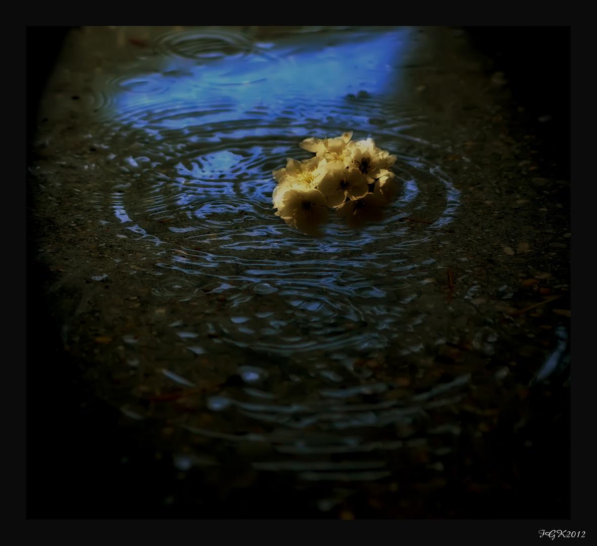 Tus flores en la lluvia( A PuraMariacreativa)