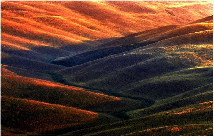"""tuscany #8027 """"Tuscany hills XV"""""""