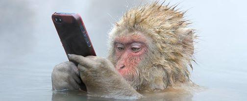tutti accedono alle tecnologie...!!!