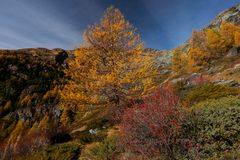 tutti i colori dell'autunno