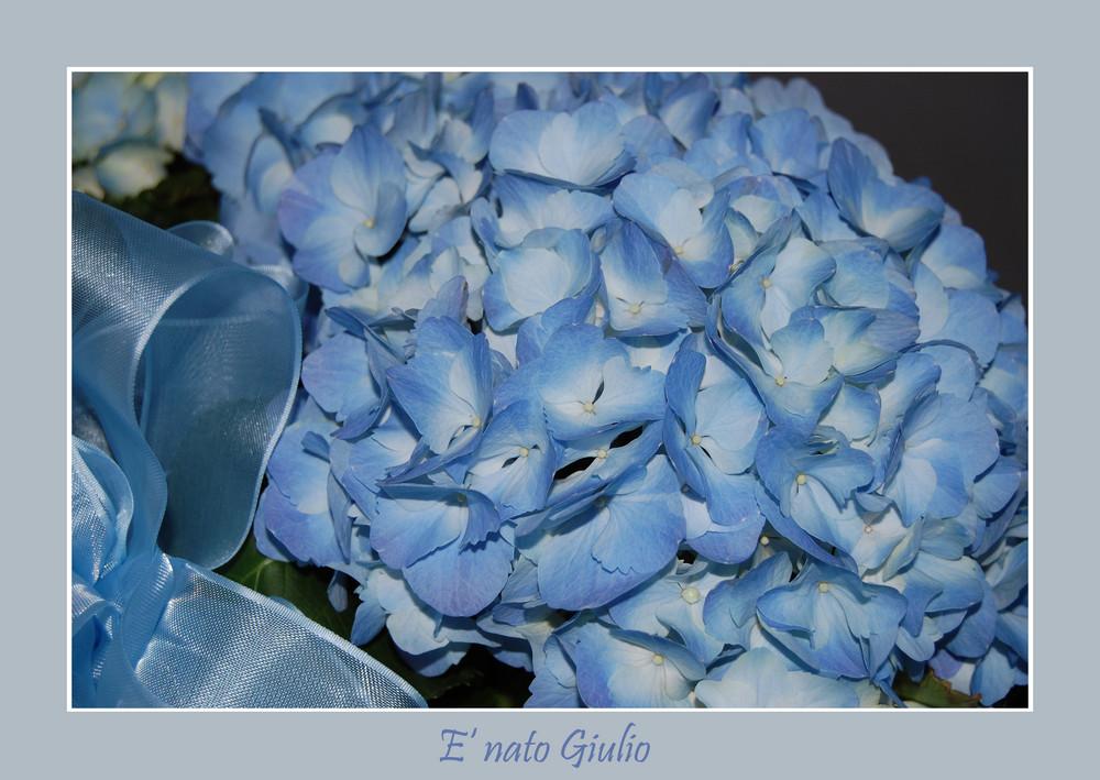 tutto azzurro