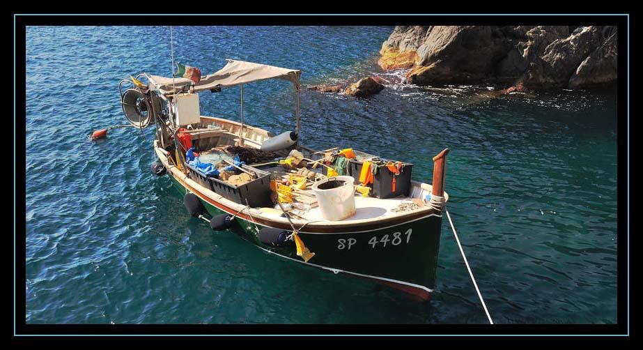 Tutto per la pesca