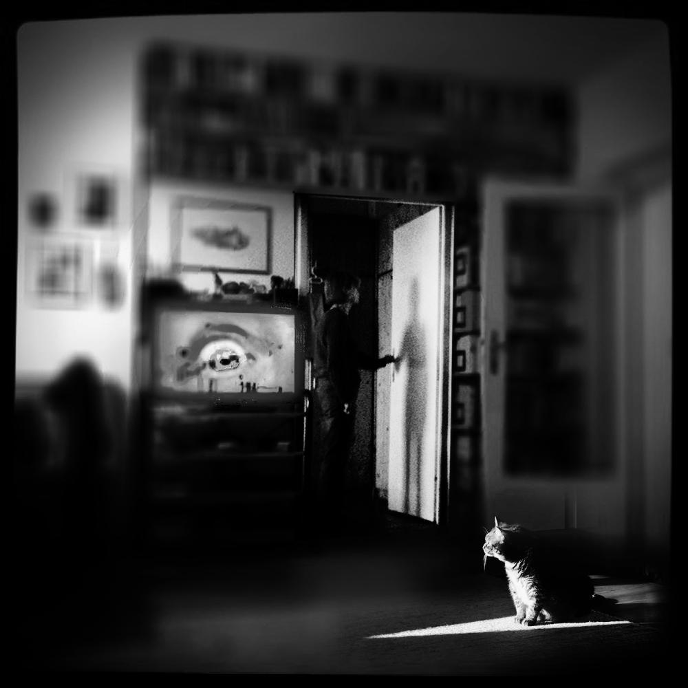 TV ( für die Katz )