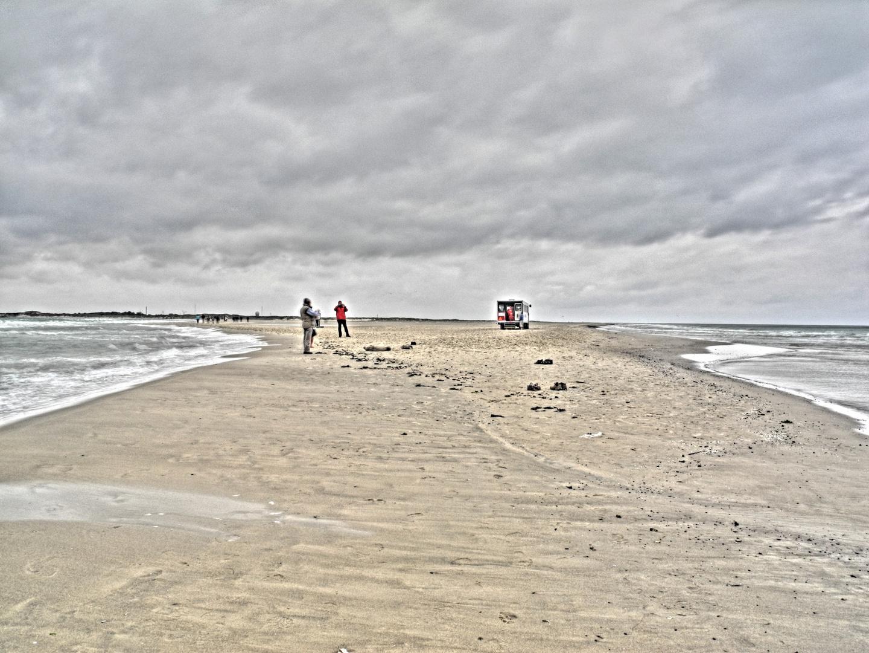 Twee zeehondjes op het strand.....04.09.2012...
