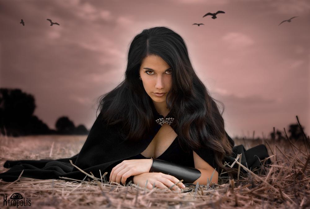 .twilight'fields'.II