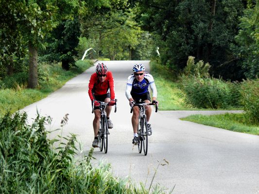 Two bicyclists ride through the countryside in a race
