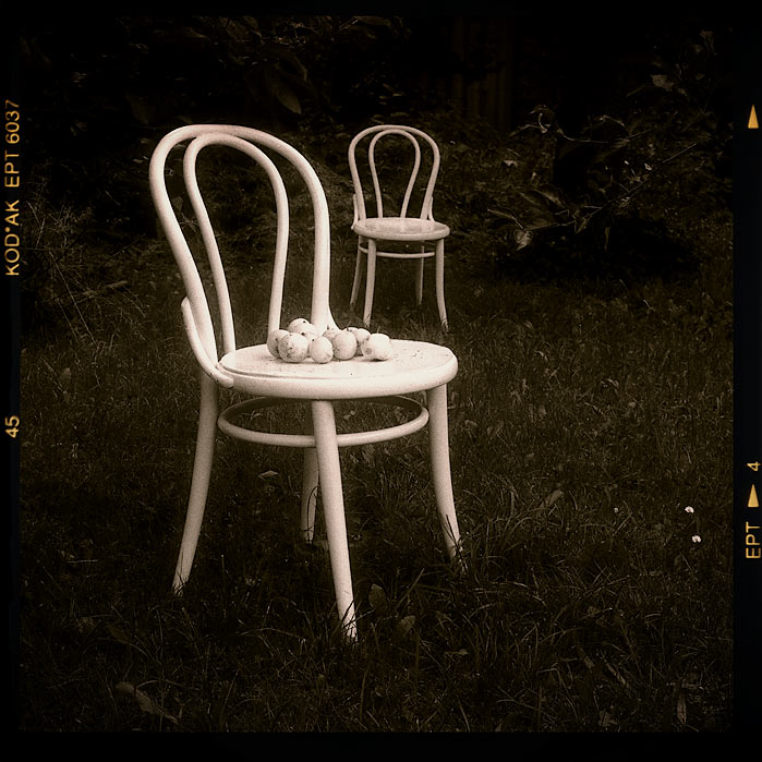 ... two chair inside of the gardens ...