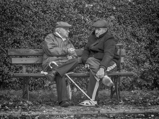 Two Men, Bench And Cane