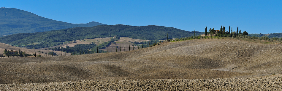typical tuscany