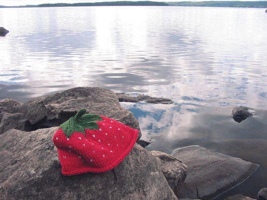 typisch finnisch
