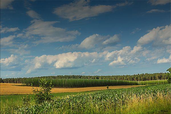 Typisch fränkische Landschaft