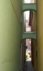 Typisch Freiburg
