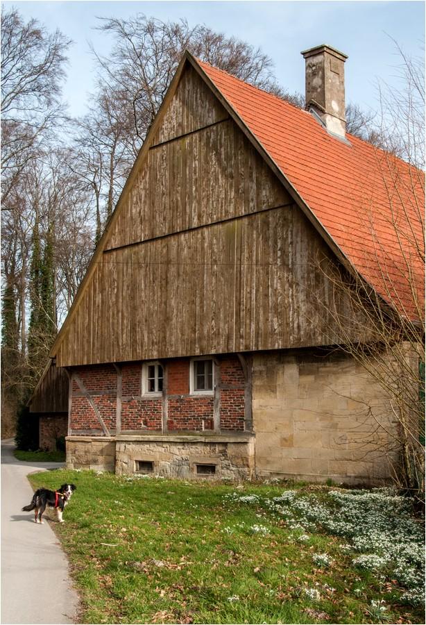 Typisch Münsterland ...