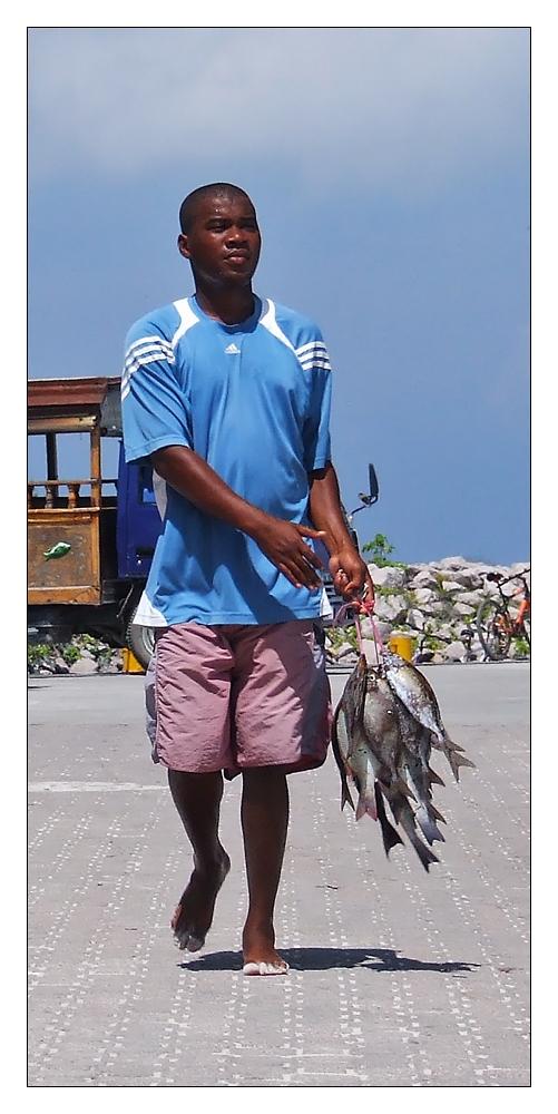 Typisch Seychellen
