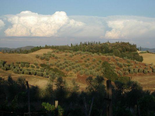 typisch Toscana!