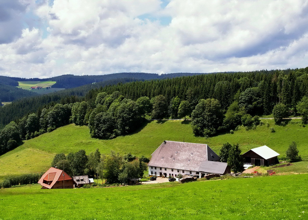 typischer Schwarzwaldhof bei Vöhrenbach