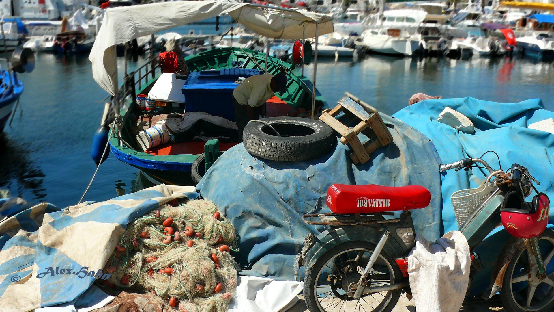 ....Typisches Bild von Tunesien / Port El-Kantaoui