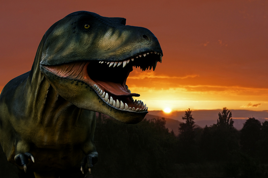 Tyrannosaurus Rex bei Sonnenuntergang