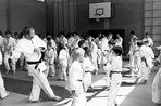 Uchi-Komi (Wurfansatzübungen) ohne Partner bei der Gymnastik