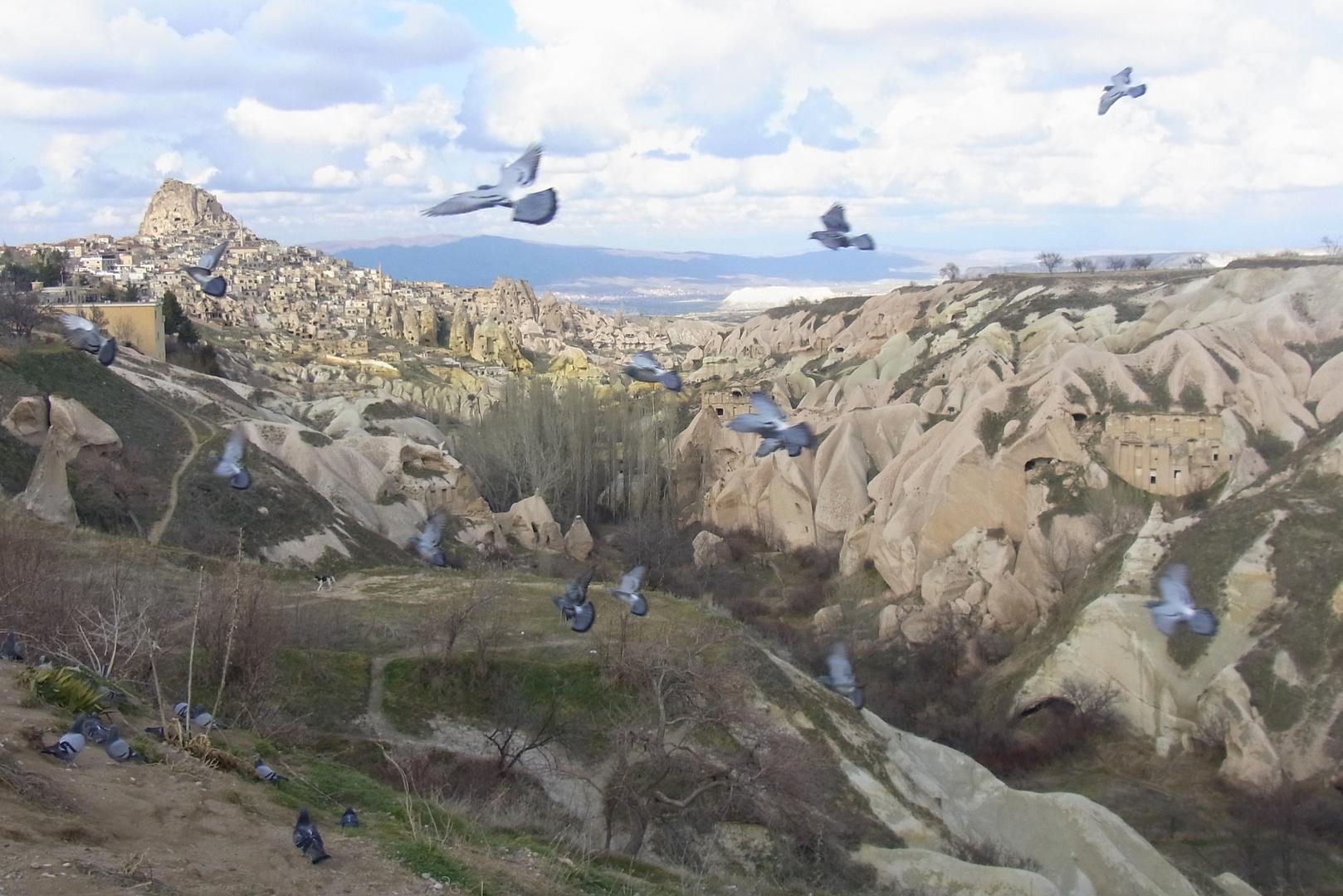 Uchisar et la vallée des pigeons