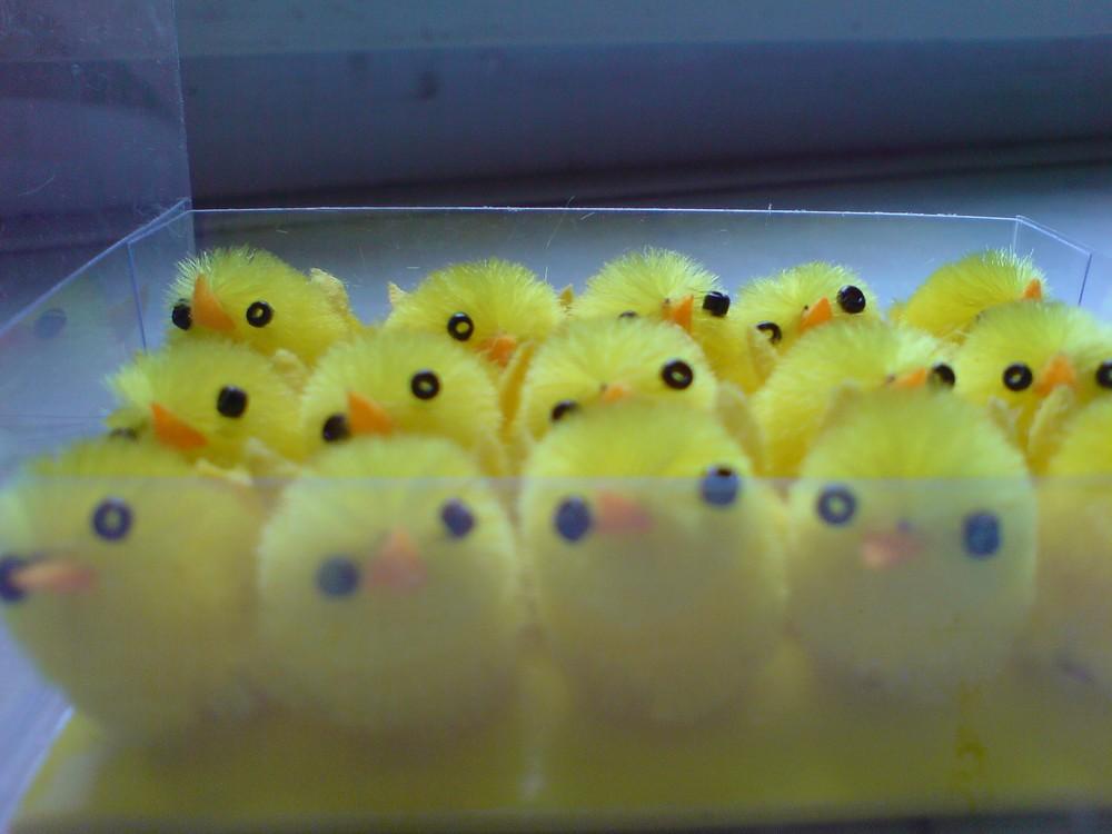 Üben für Ostern ... Wer kanns besser?