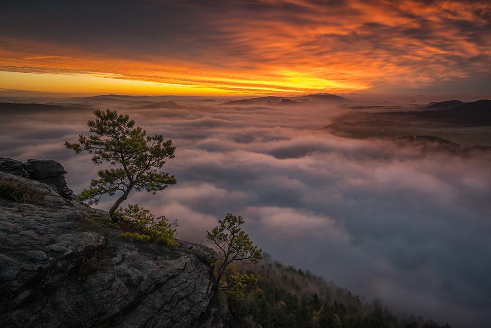 Über dem Nebel