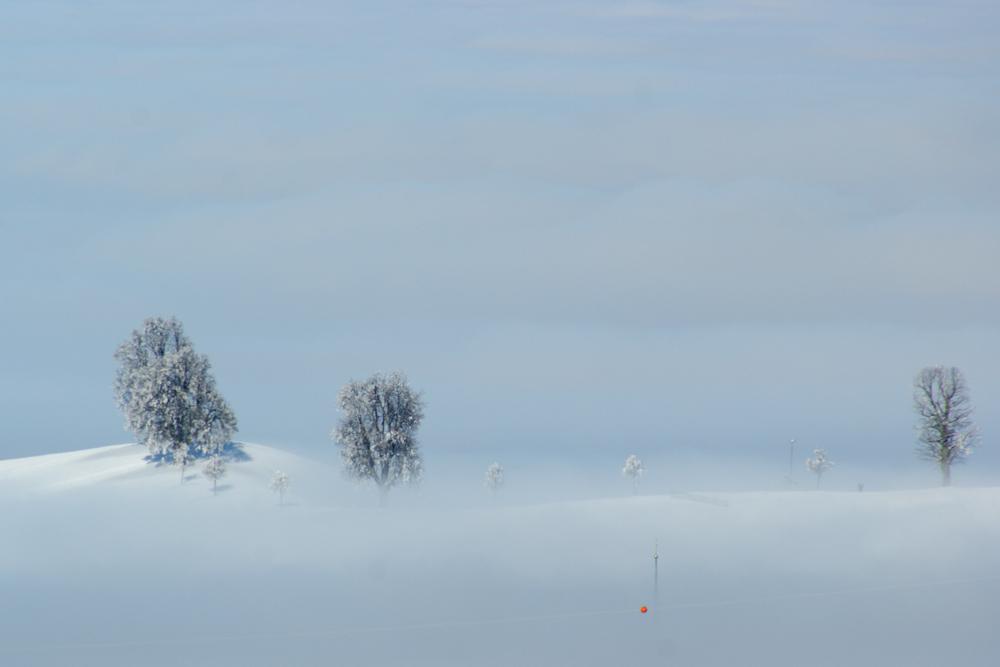 ...über dem Nebel...