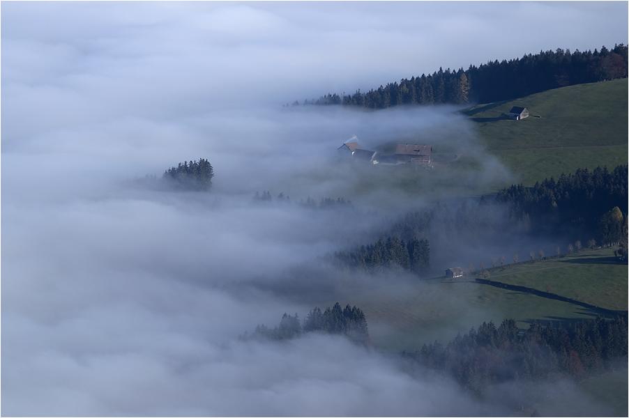 über dem Nebel....