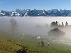Über dem Nebel ...