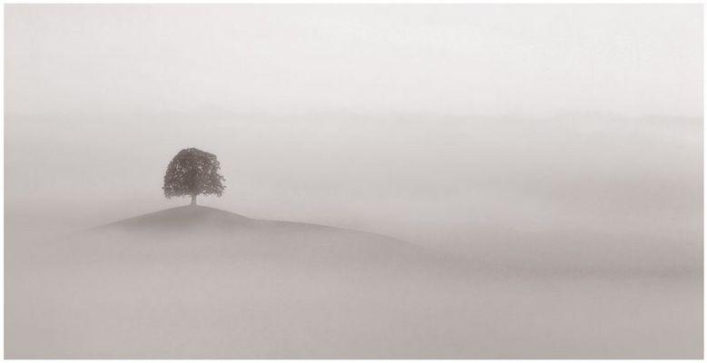 über dem Nebel II ...