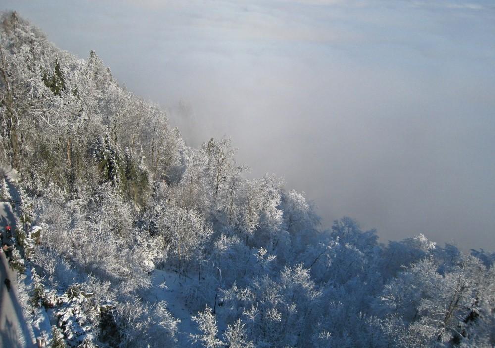 Über dem Nebelmeer...