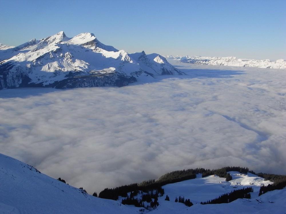 .:Über dem Nebelmeer I:.