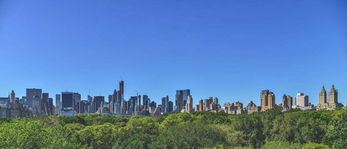 über den Central Park geschaut