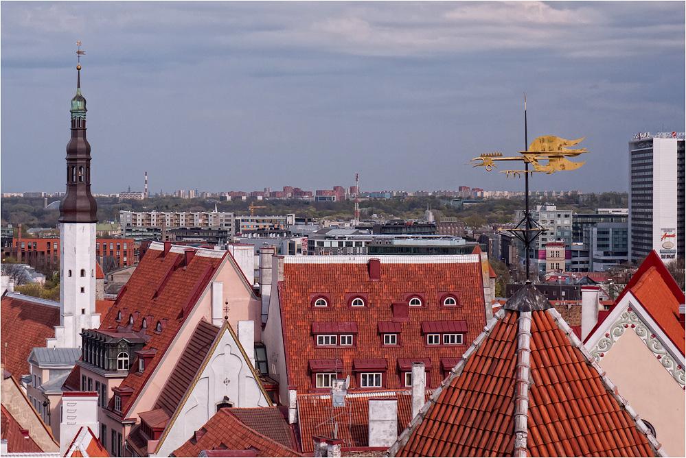 Über den Dächern der Stadt..