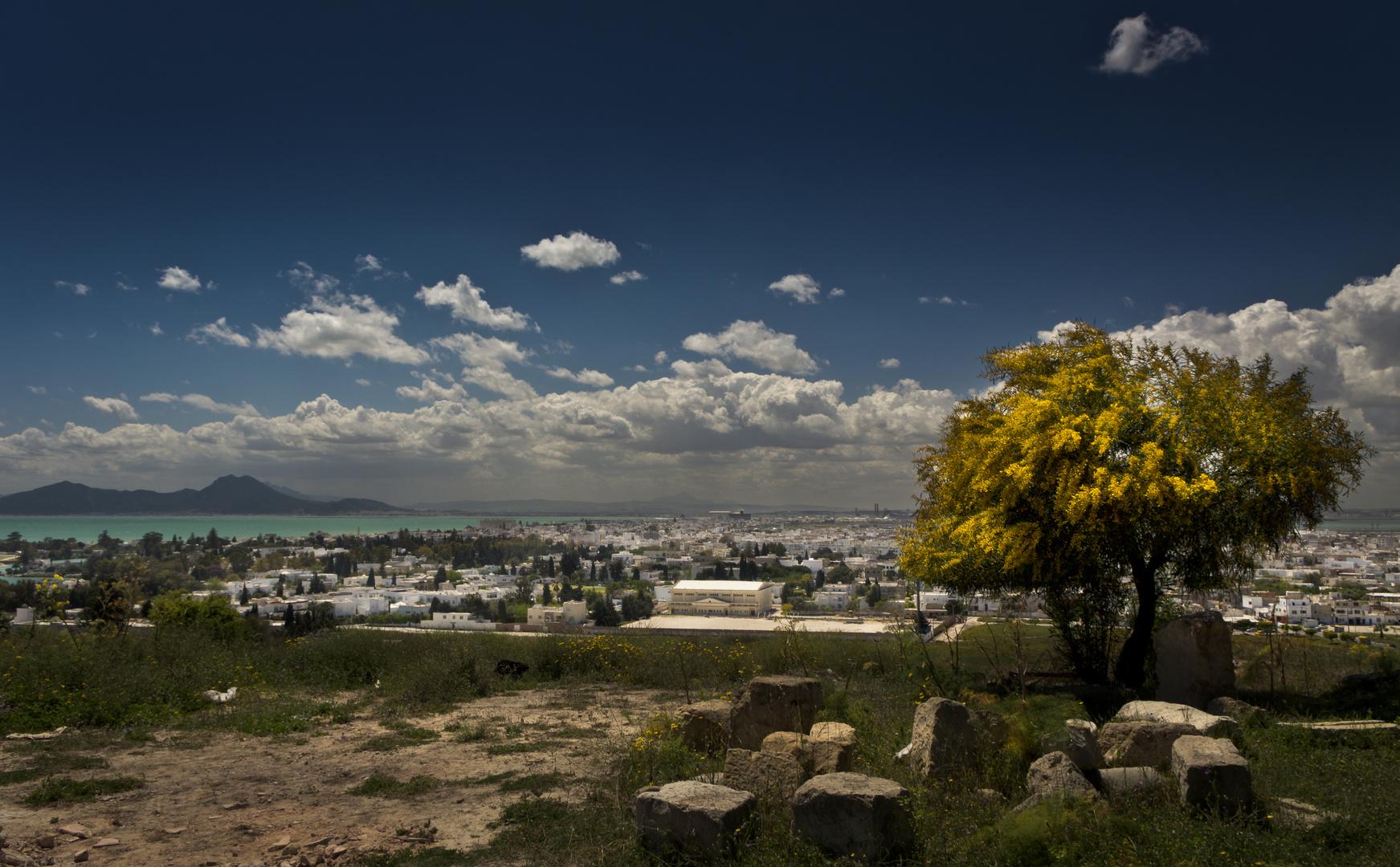 Über den Dächern von Carthage