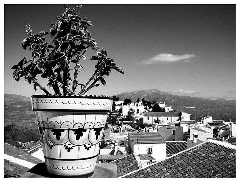 Über den Dächern von Comares