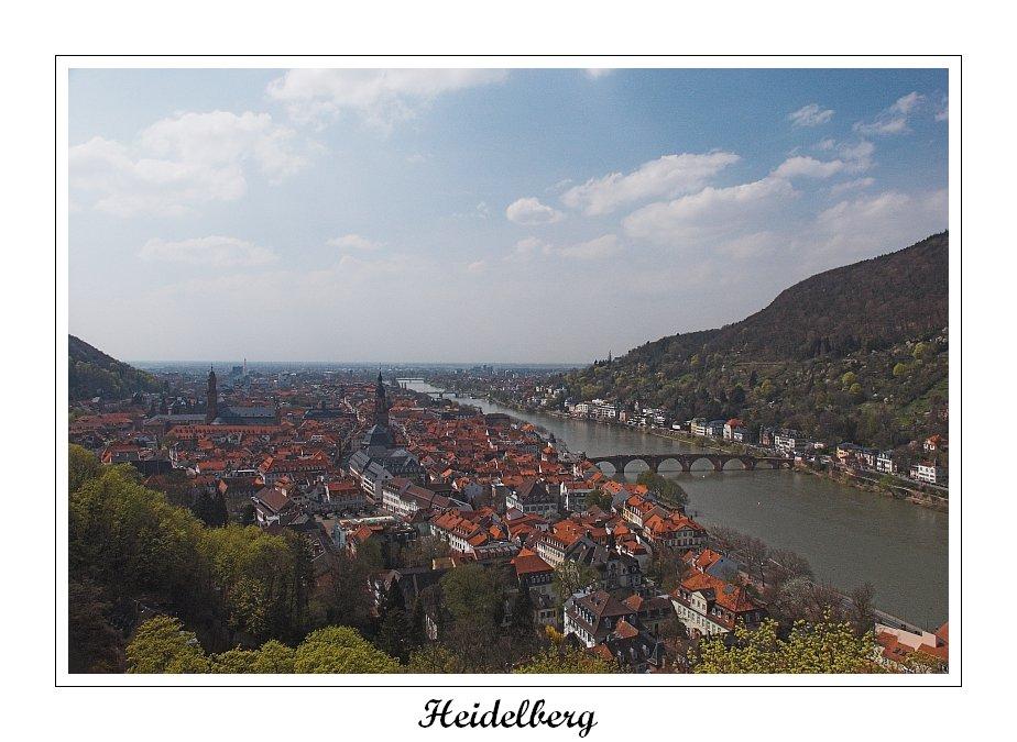 Über den Dächern von Heidelberg