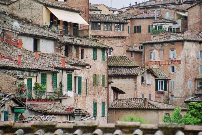 über den Dächern von Siena-2