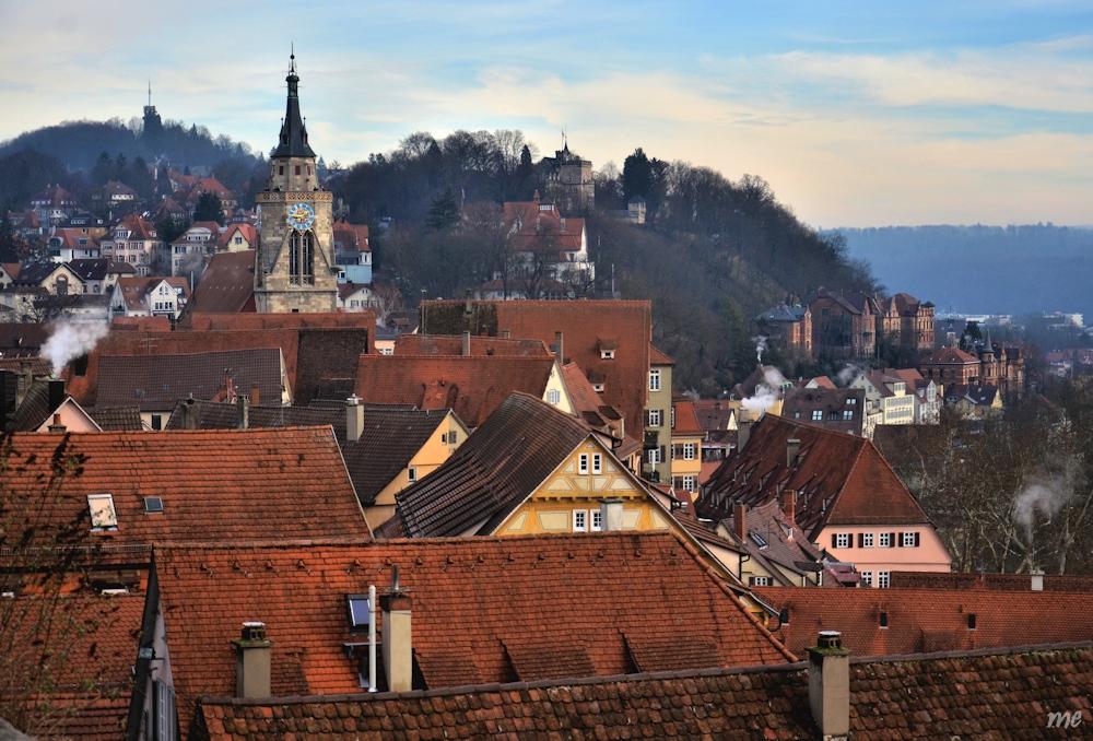 Über den Dächern von Tübingen