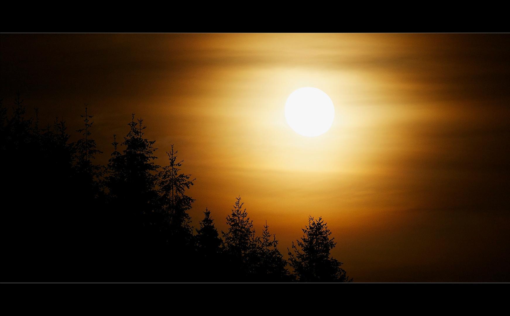 Über den Wäldern zieht der Mond auf ...