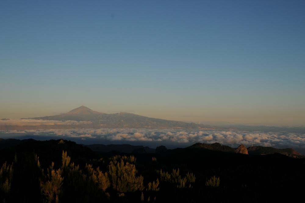 Über den Wolken - der Teide thront